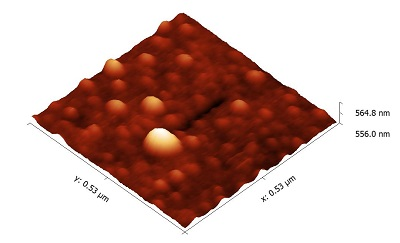 Atomic force microscopy image of a gold nanoparticle on GaAs substrate showing the trail left by its movement.